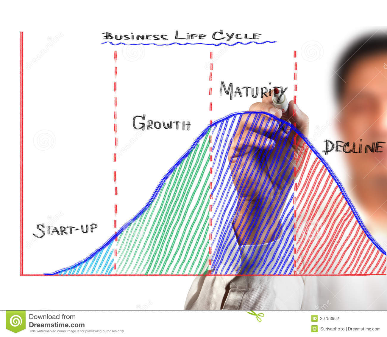 Business life cycle nike