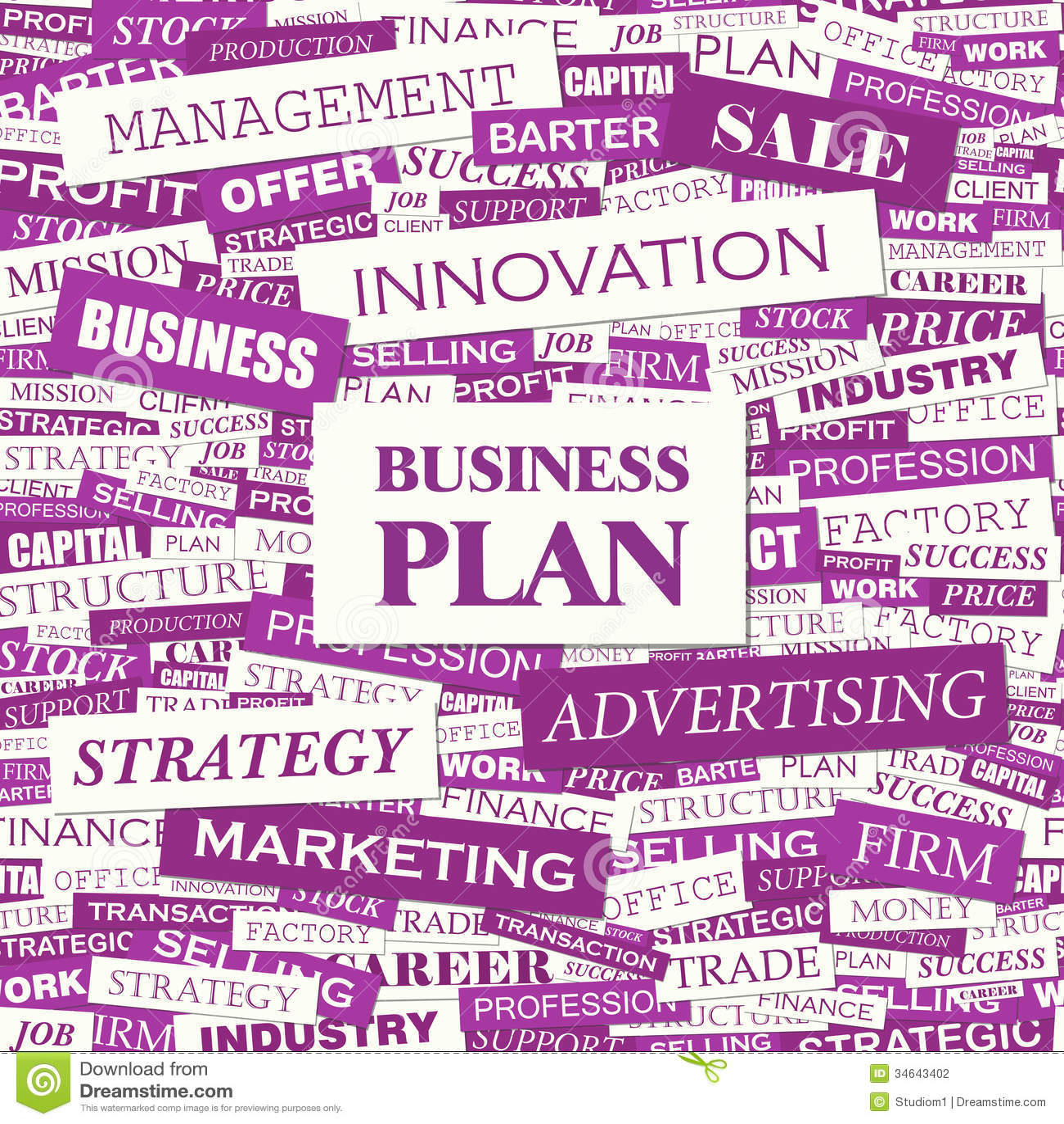 definition business plan