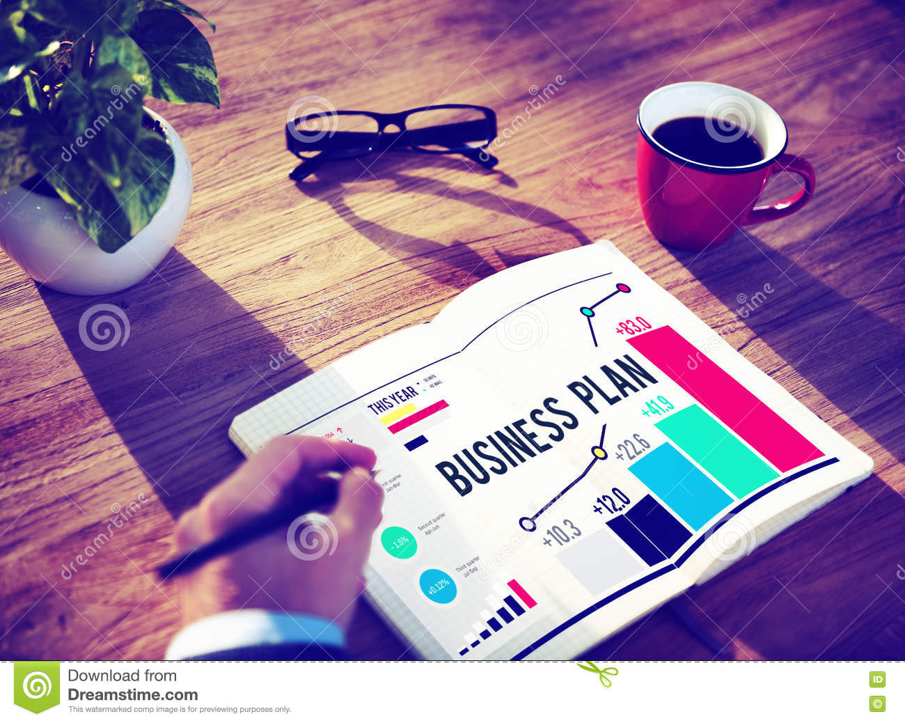 Objective for business plan
