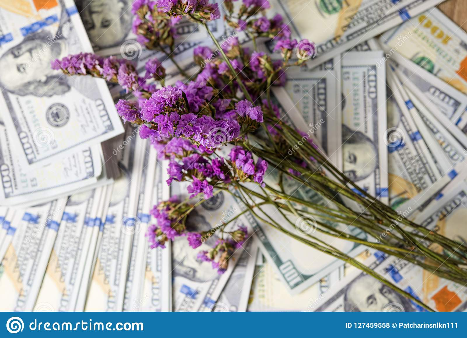 Business planner on financial income, dollar and business diagrams on financial reports with coins and purple flowers. Work and p