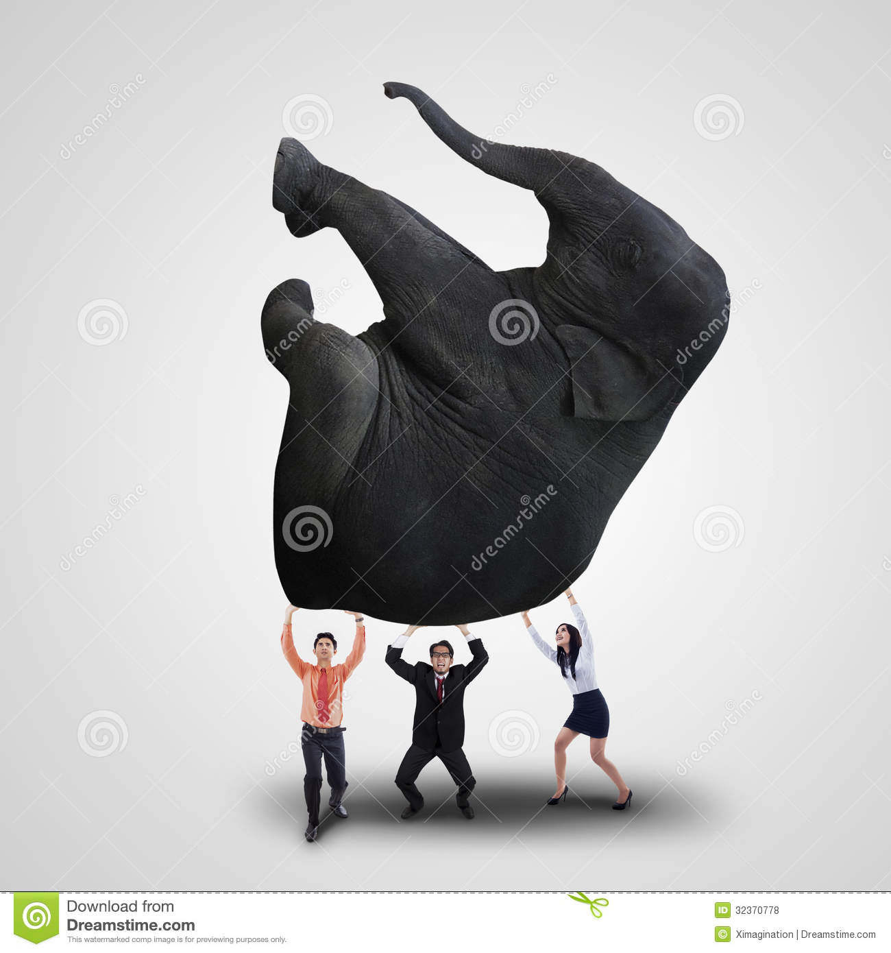 Business team lifting elephant on white