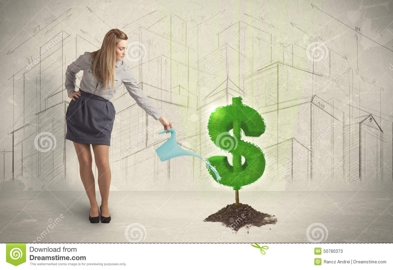 Business woman poring water on dollar tree sign on city background