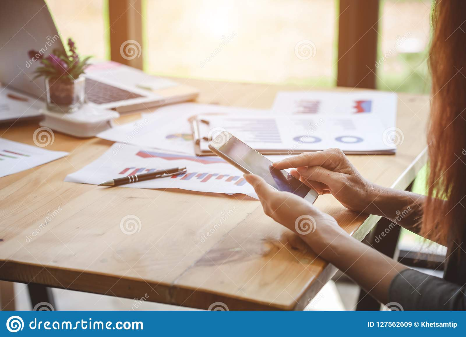 Business woman at working with financial