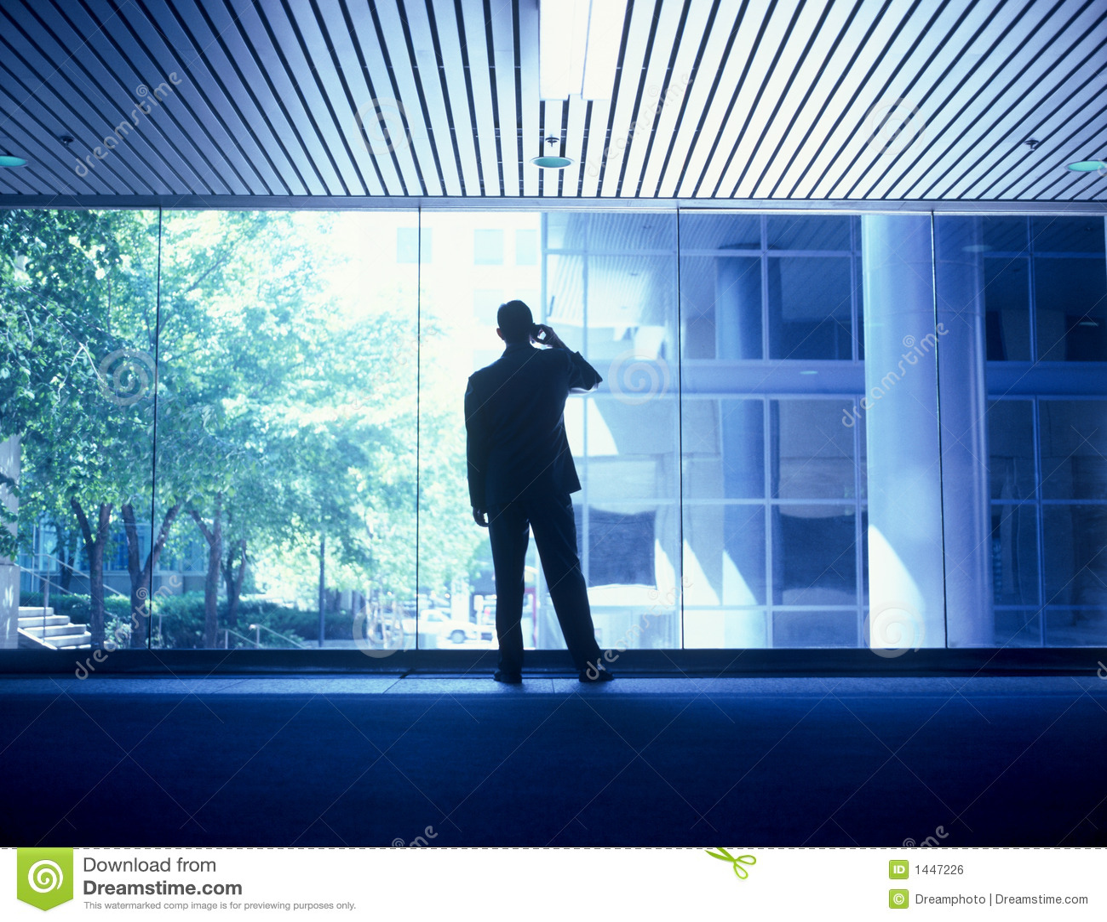 Businessman 05