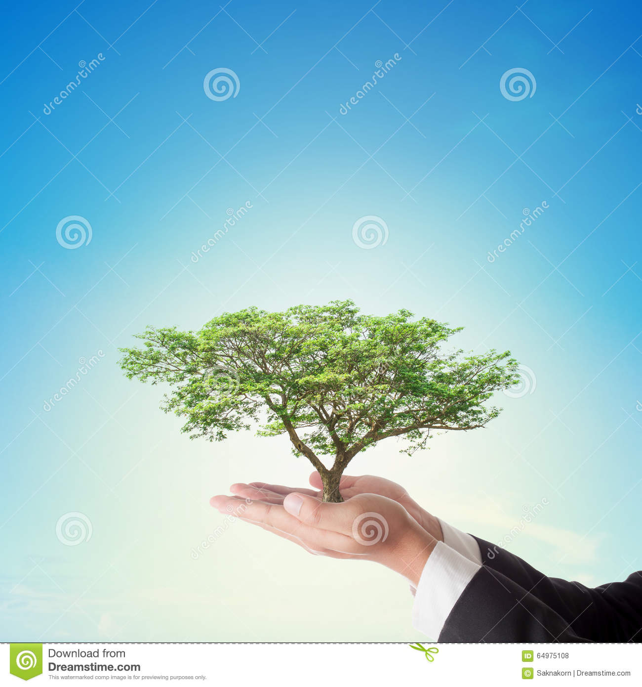 corporate social responsibility banyan tree holdings Corporate social responsibility this essay will be based on corporate social responsibility (csr) it should allow the reader to understand what csr is, the importance of csr and how it would influence customer activities.