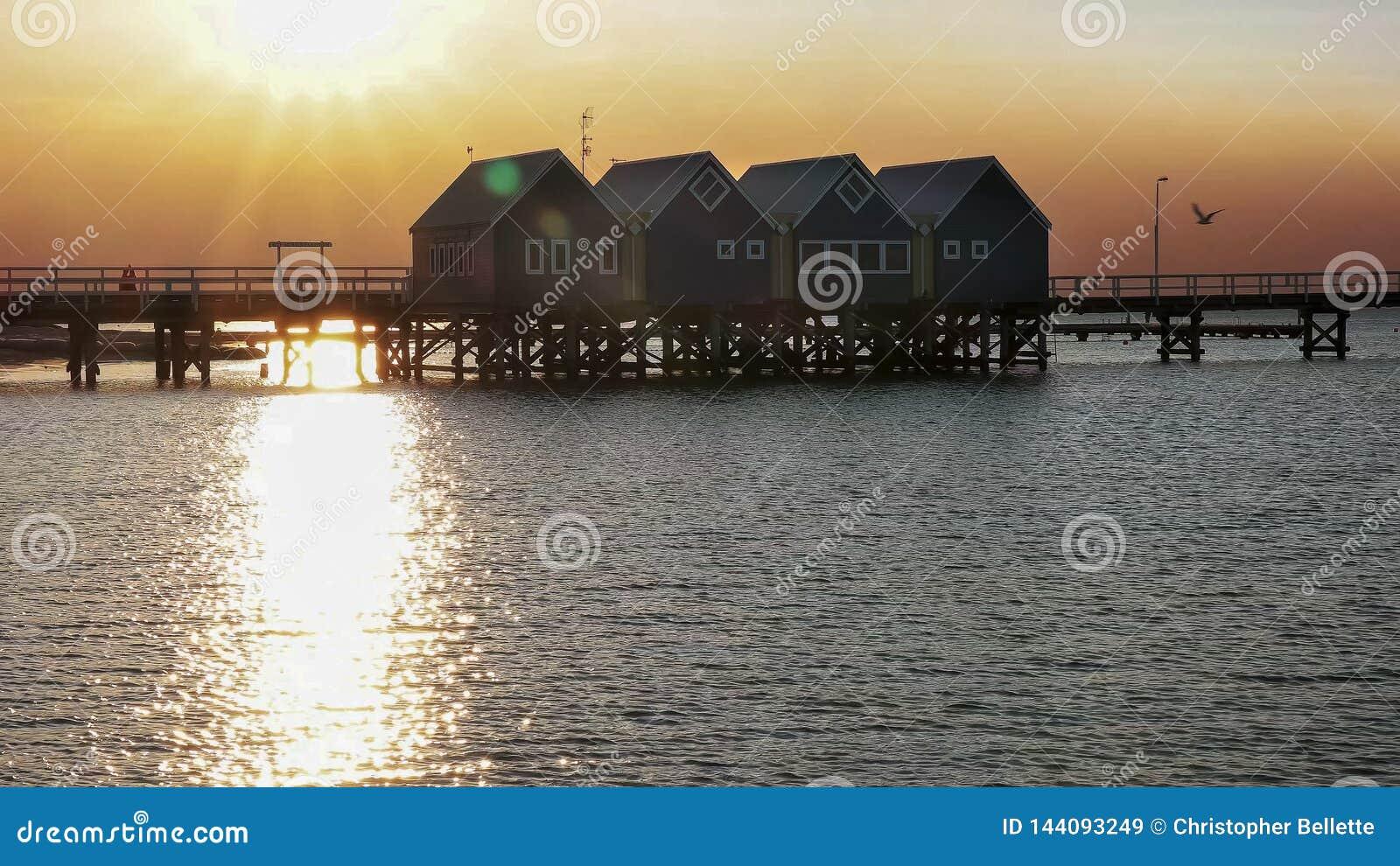 BUSSELTON, zachodnia australia, AUSTRALIA LISTOPAD 9, 2015: busselton jetty i położenia słońce odbijaliśmy na wodzie