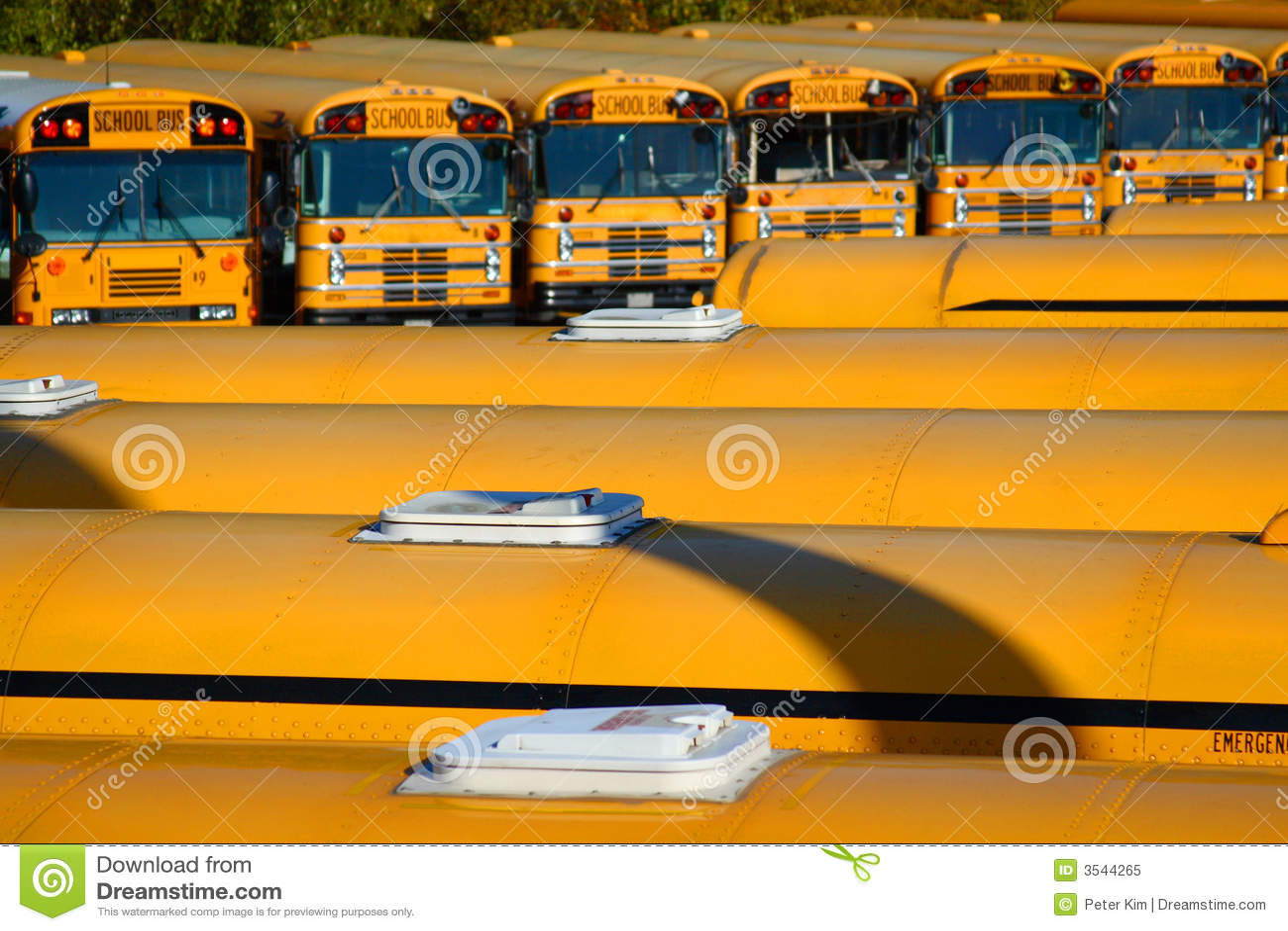 Bussradskola