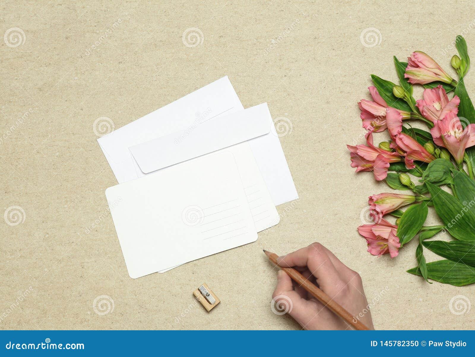 Busta e cartolina con i fiori su fondo di pietra