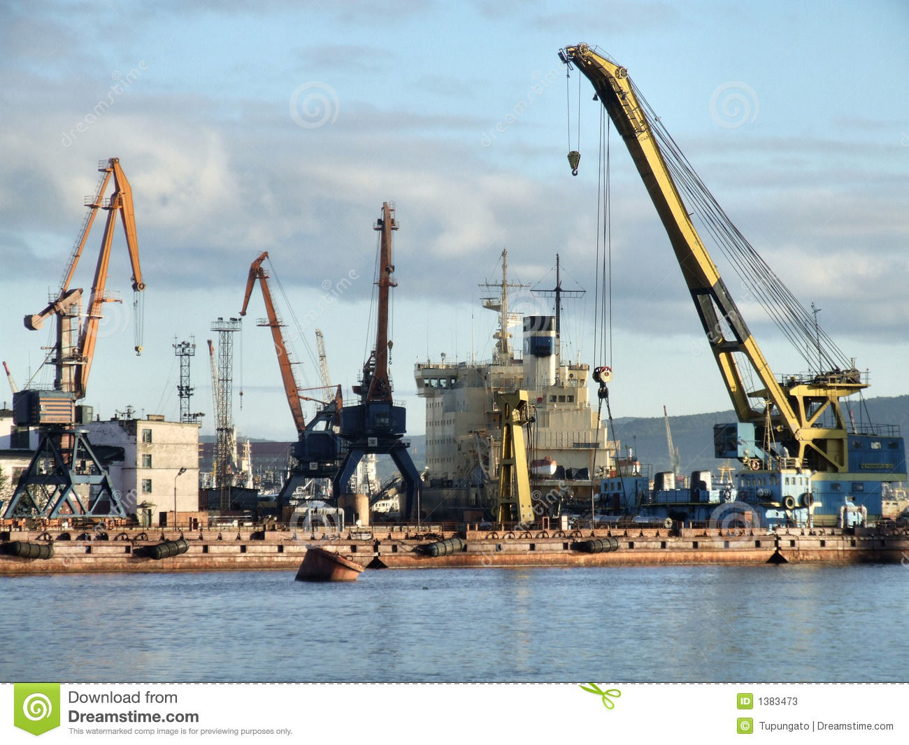 Busy cargo harbor infrastructure