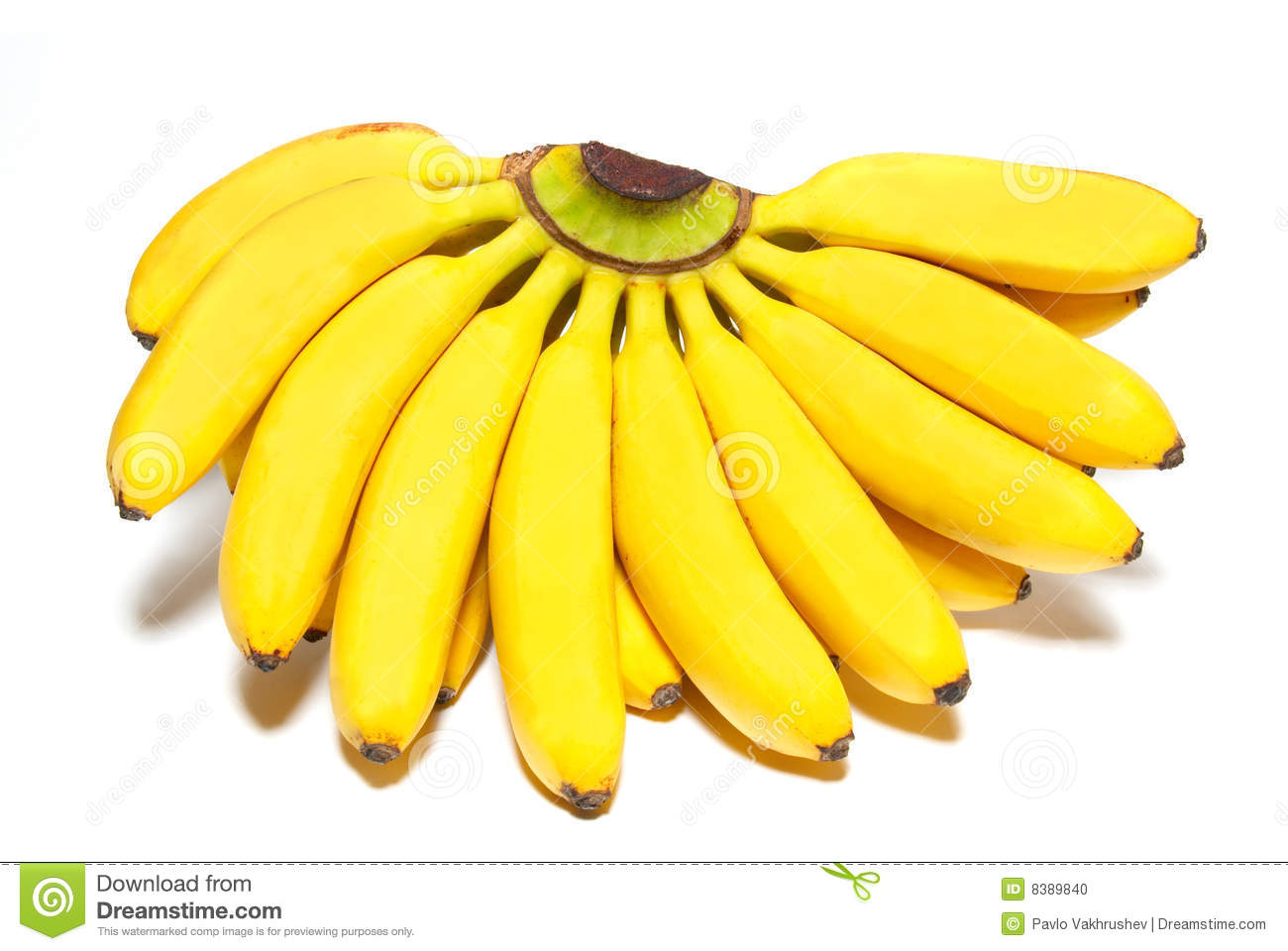 of small bananas. stock photo. image of food, nutrition - 8389840