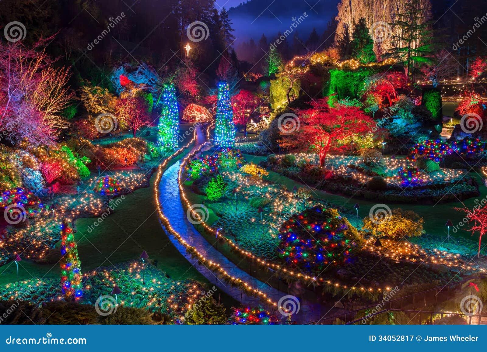 Butchart庭院五颜六色的圣诞灯