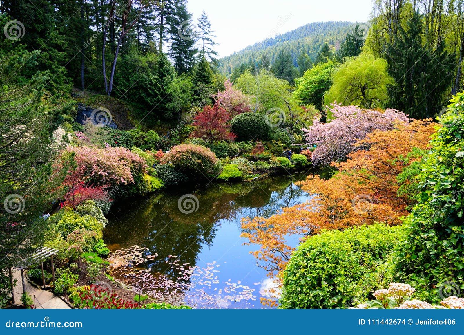 Butchart trädgårdar, Victoria, Kanada, dammet med den vibrerande våren blommar