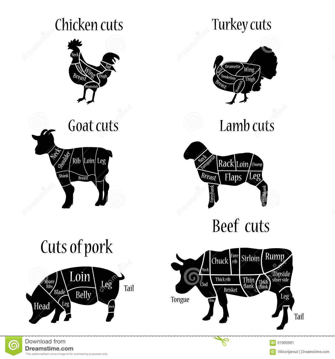 Stock Illustration Butcher Chart Vector Illustration Turkey Lamb Goat Chicken Cow Pork Cuts Diagramm Image61900991 on pork cuts guide