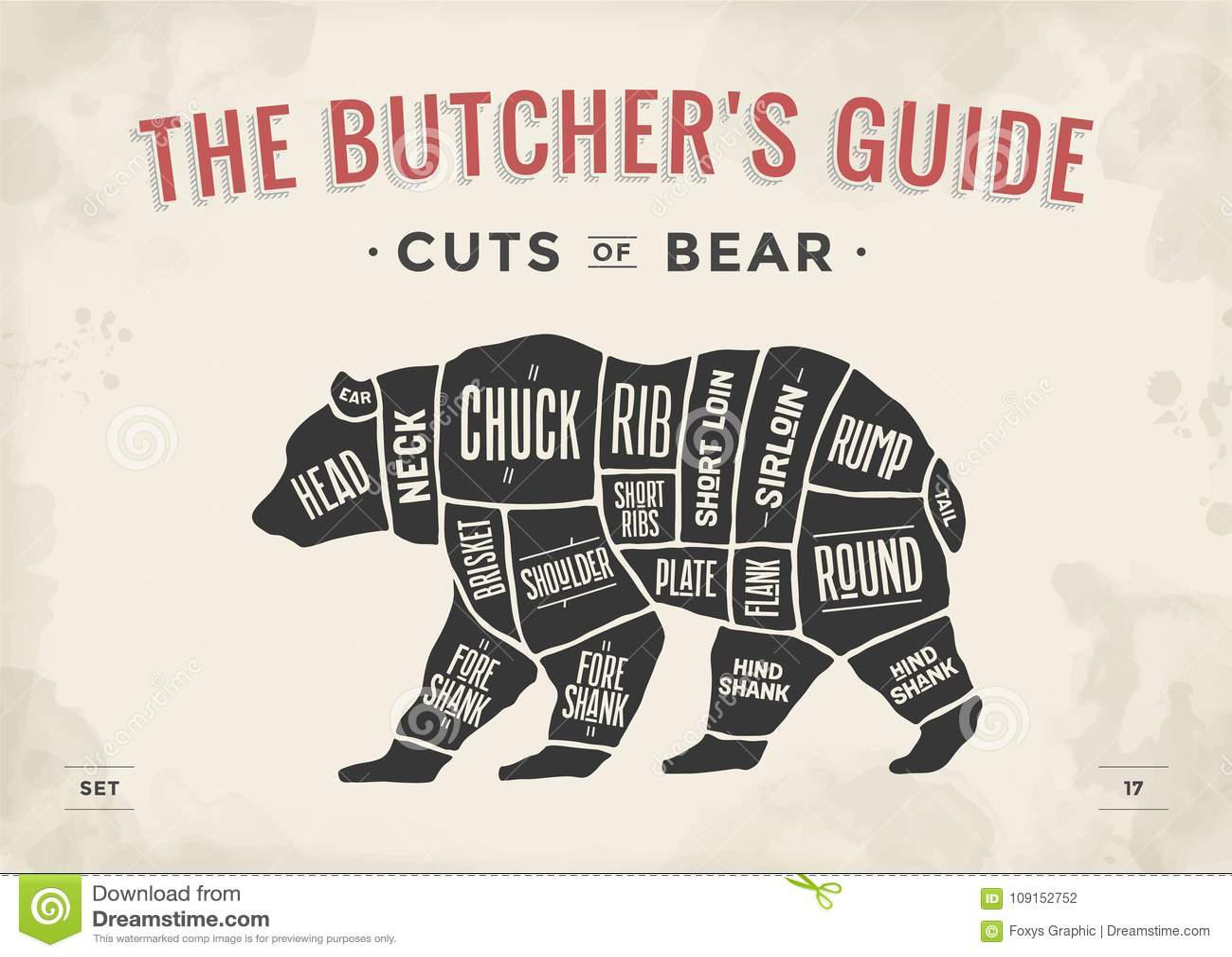 Bear Cut Diagram - Wiring Diagram •