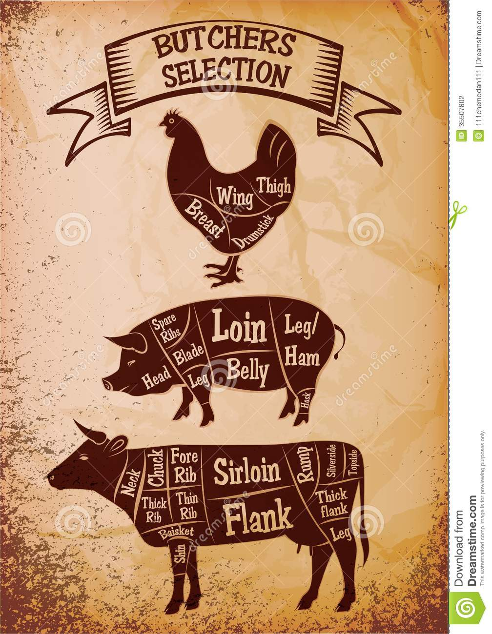 Lamb besides House House Butchery Beef Cuts Poster additionally Stock Illustration Vector Beef Logos Labels Charts furthermore How To Trim Pork Spare Ribs St Louis Style additionally Cat131324. on beef cuts chart