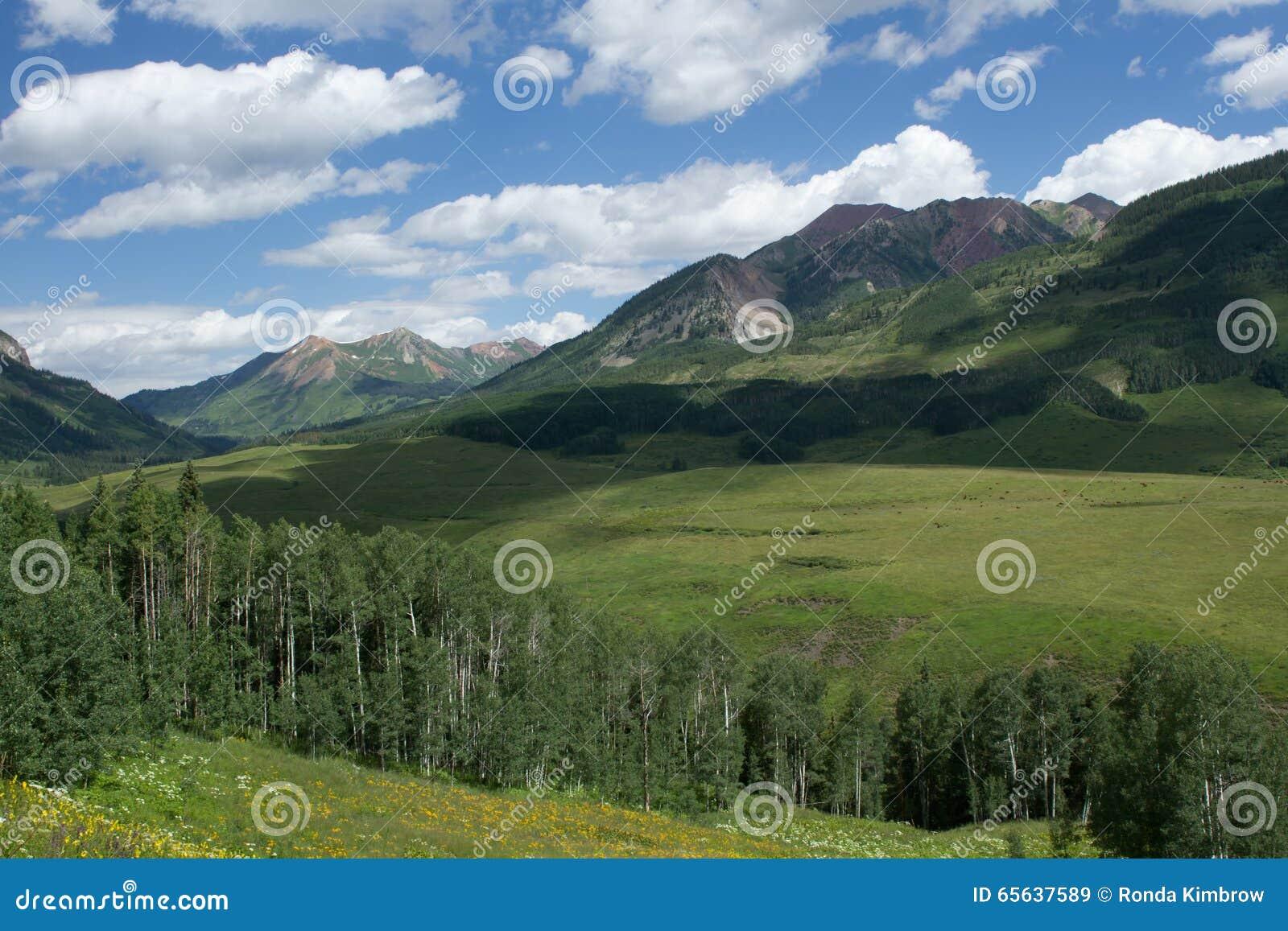 Butte crêtée le Colorado pendant l été