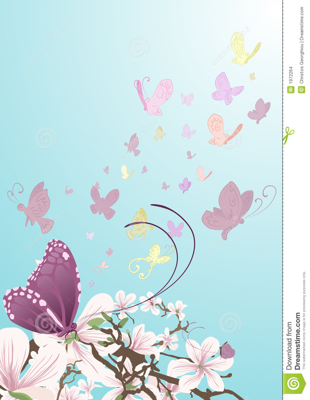 Butterflies and beautiful flowers
