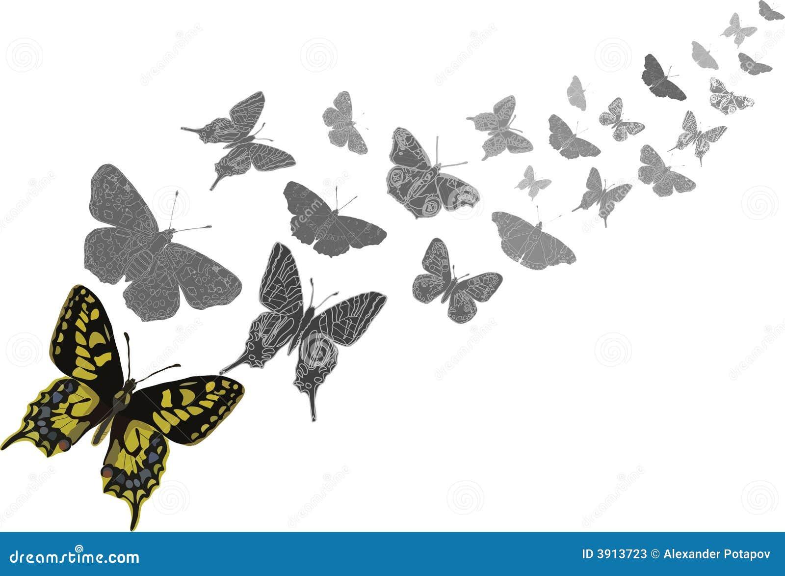 Butterflies flying stock vector. Illustration of ...
