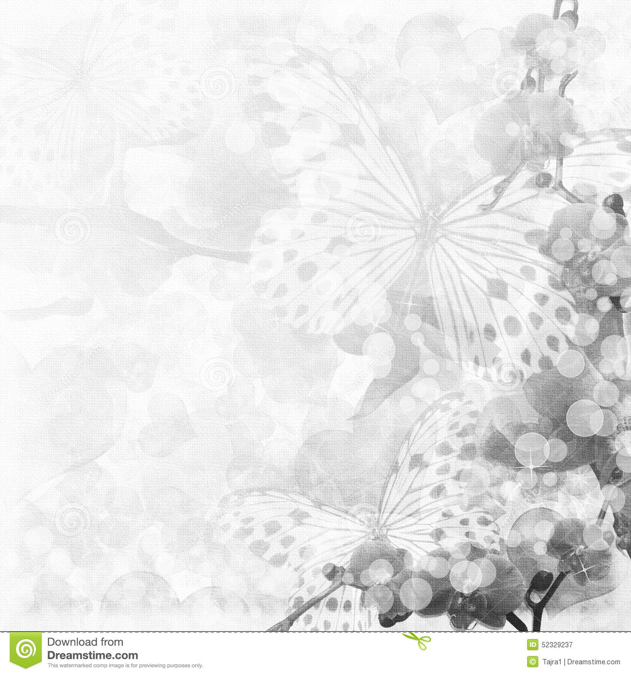 Butterflies And Orchids Flowers Background Stock ...