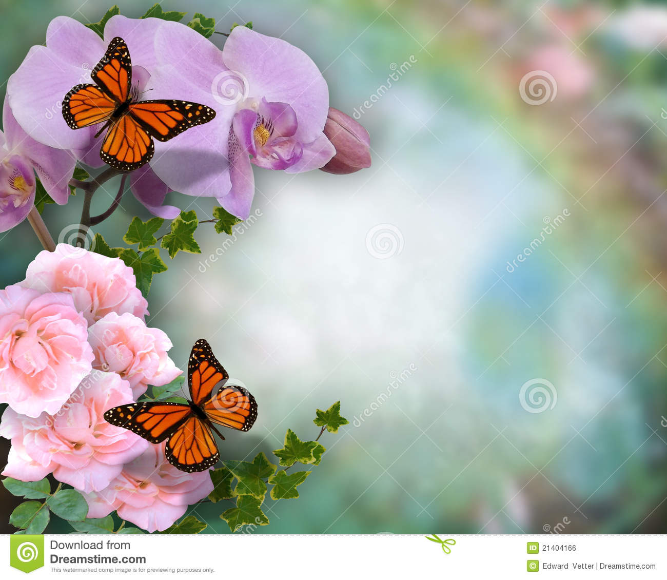 Butterflies Orchids And Roses Background Royalty Free Stock Image ...