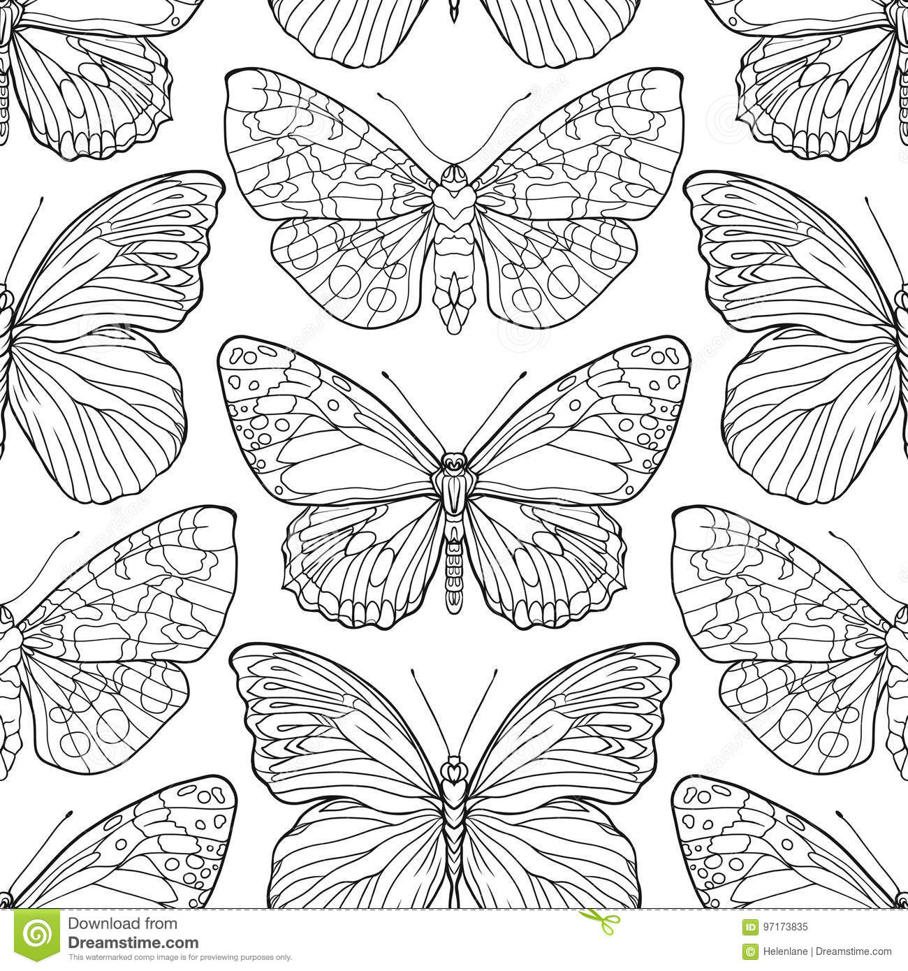 butterflies  seamless pattern  background  outline hand