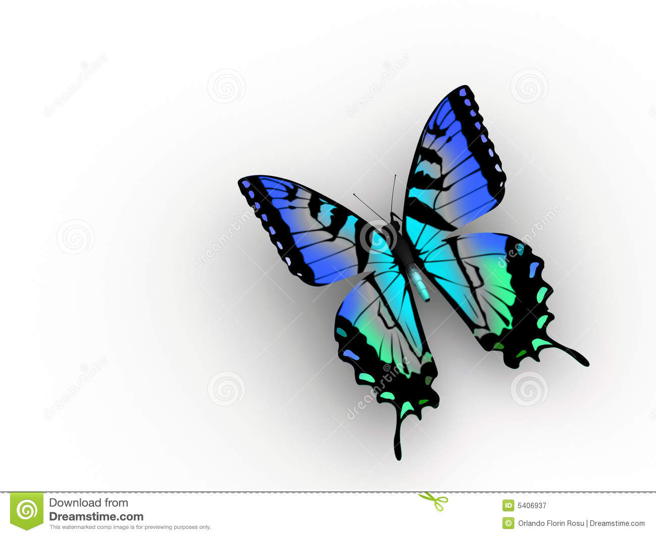 Butterfly Royalty Free Stock Photography - Image: 5406937: www.dreamstime.com/royalty-free-stock-photography-butterfly...