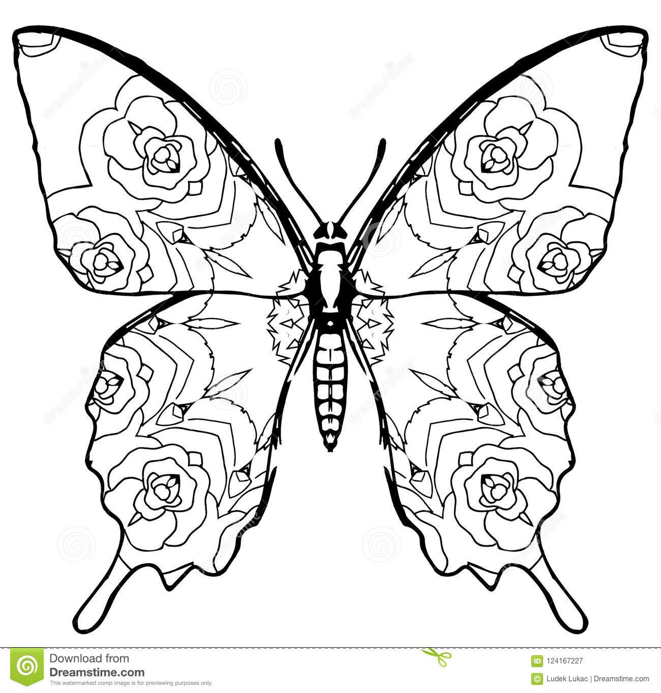 Butterfly Coloring For Kids And Adults For Moments Of ...