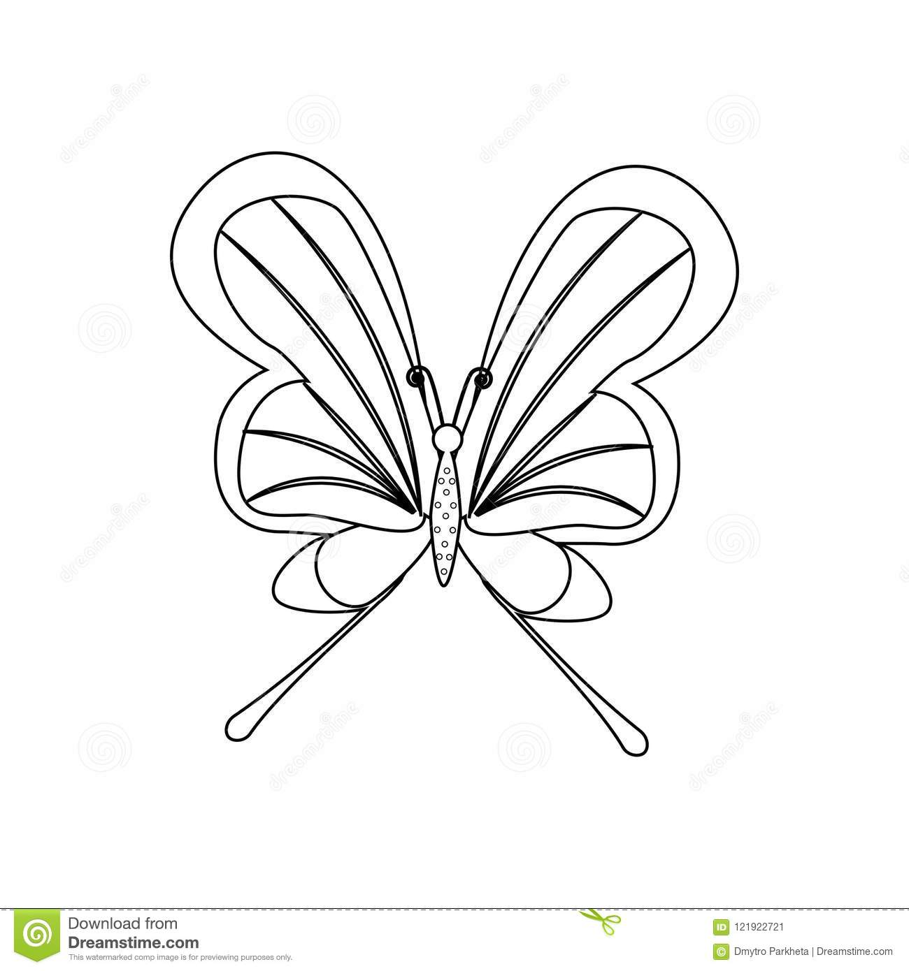 Butterfly Coloring Pages Stock Vector Illustration Of Summer