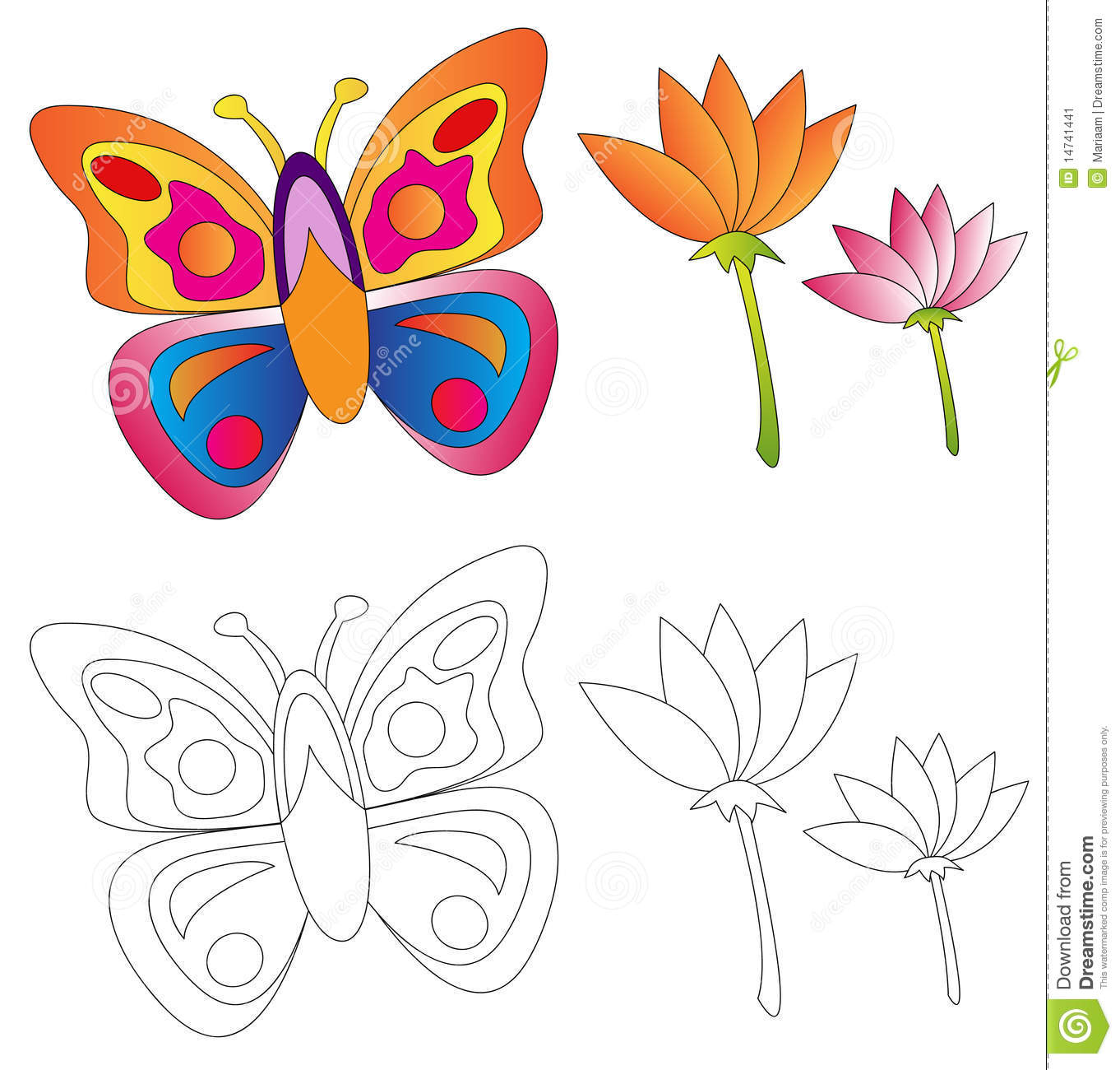Butterfly & Flowers/coloring Book Stock Illustration