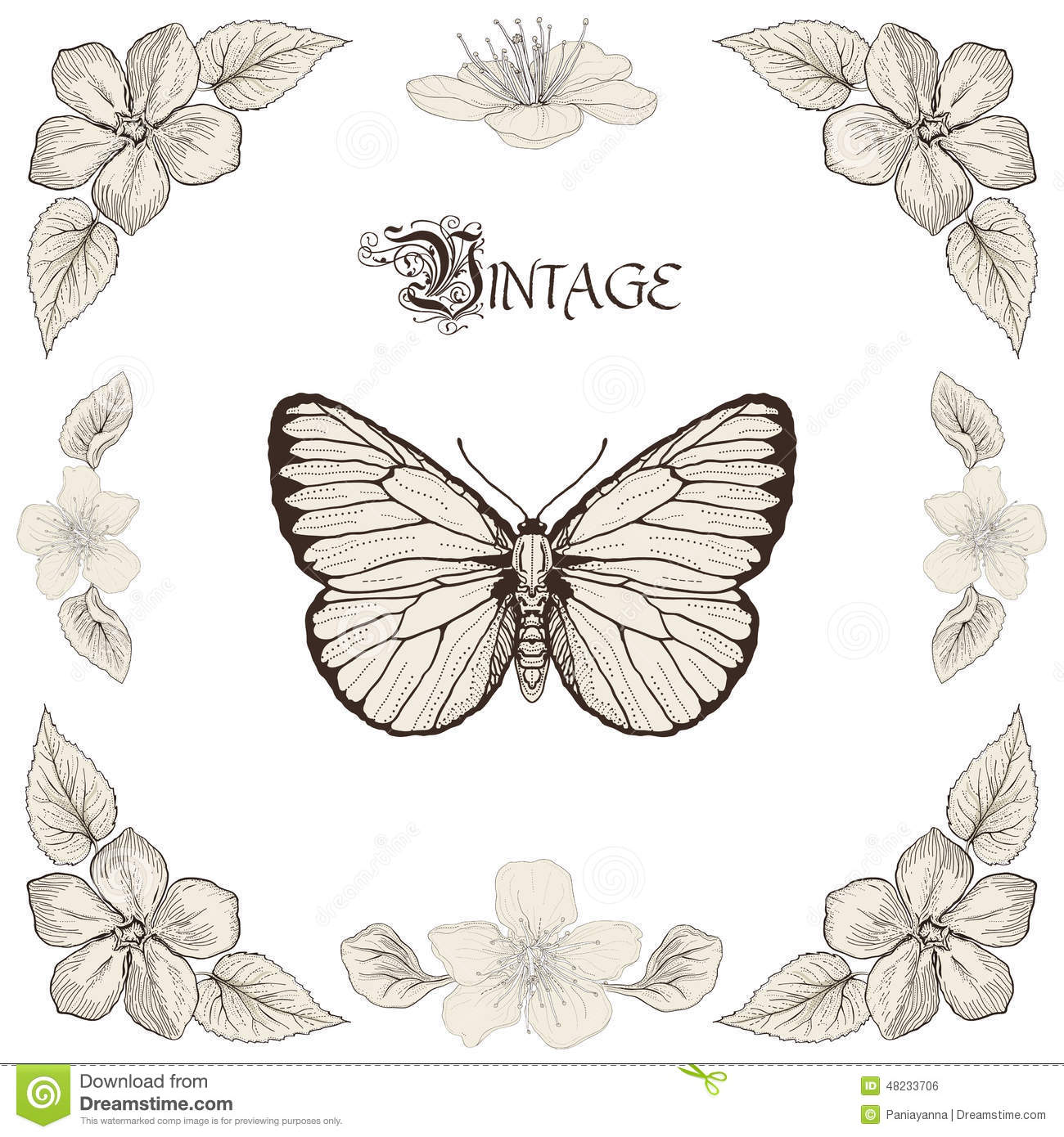 butterfly and flowers drawing vintage engraving style stock vector
