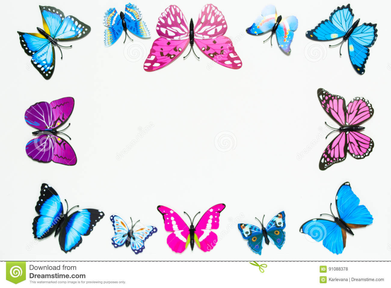 Butterfly frame decoration on white background