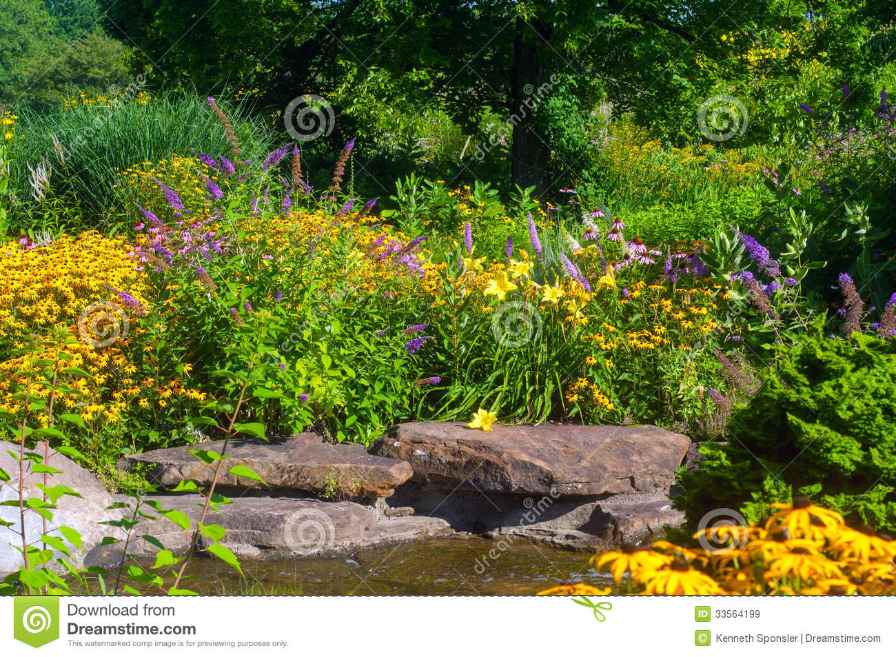 Butterfly Garden Royalty Free Stock Images Image 33564199