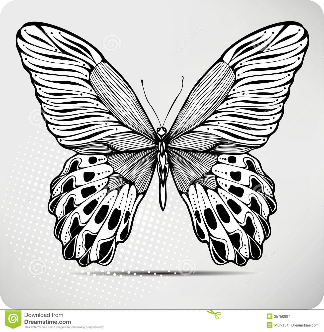 Butterfly, Hand-drawing. Vector Illustration. Stock Vector