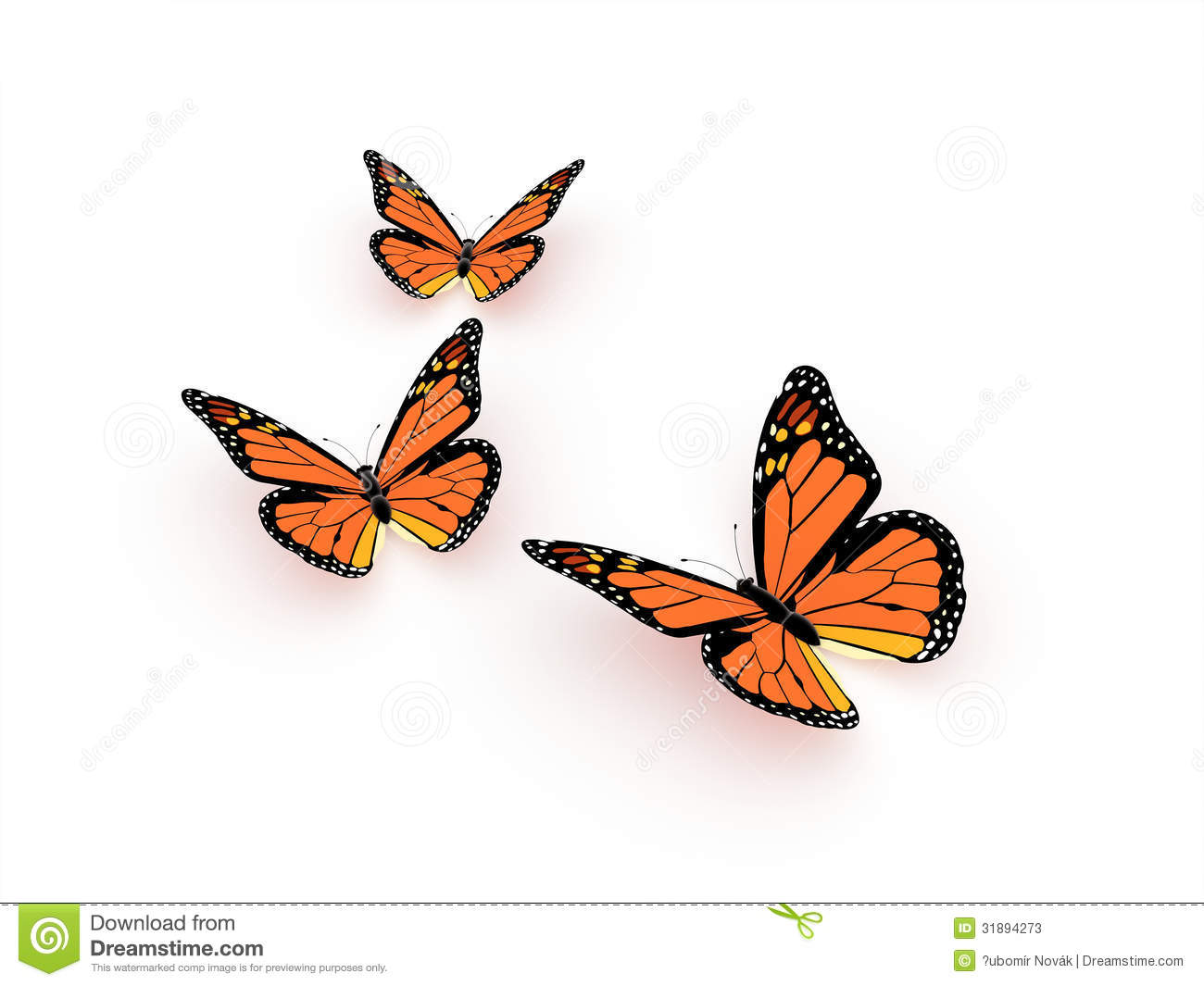 HD wallpapers monarch butterfly images free