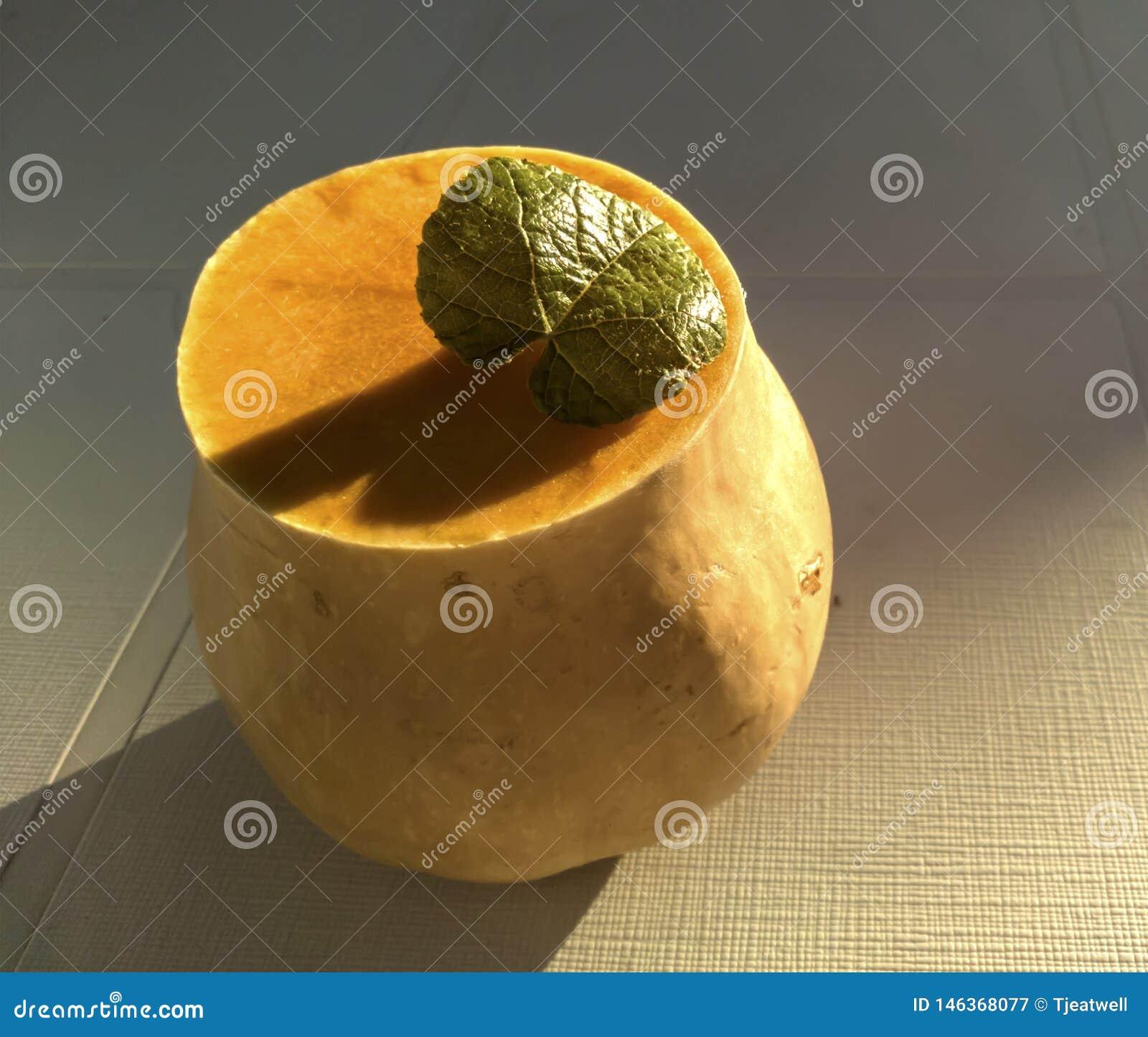 Butternut mit einem grünen Blatt