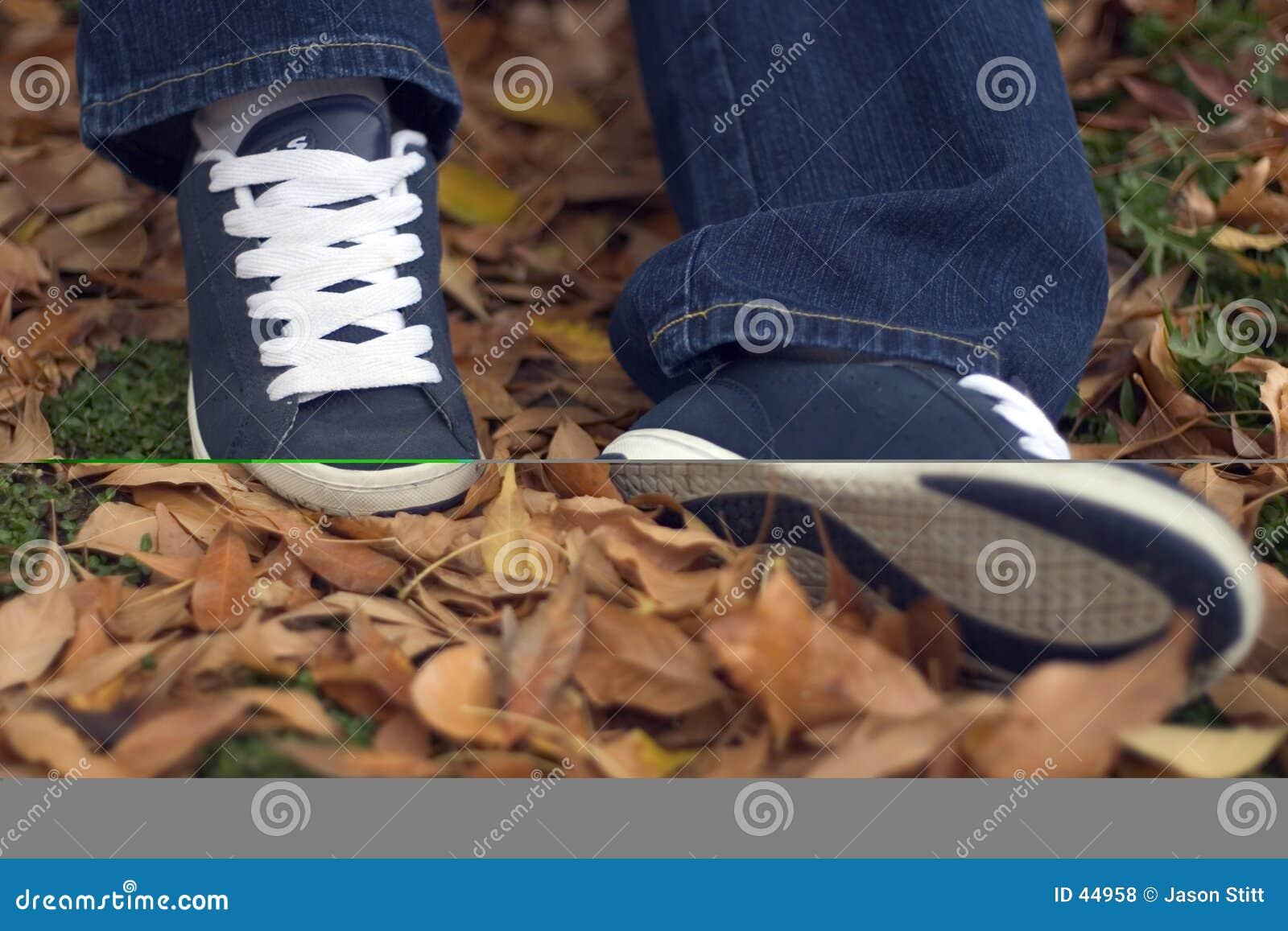 Buty liści