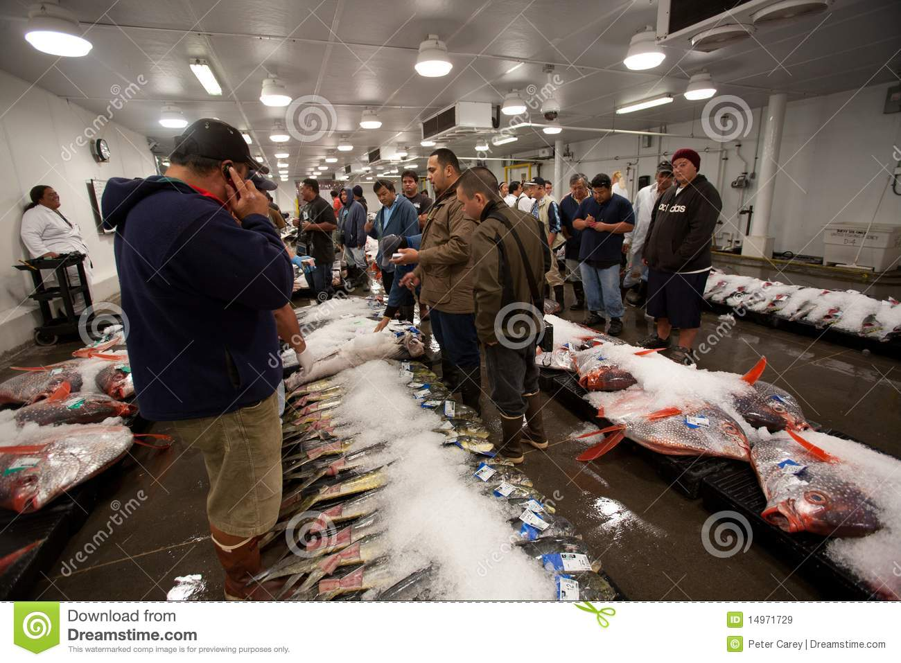 Buyers at united fishing agency auction honolulu for United fishing agency