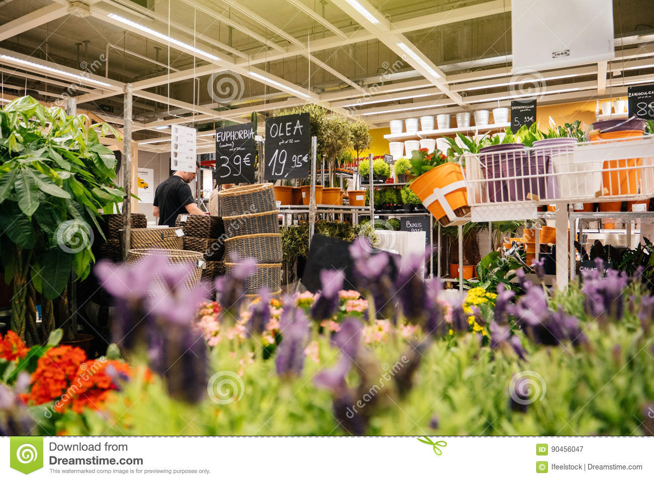 buying flowers inside ikea store editorial photo 90456047. Black Bedroom Furniture Sets. Home Design Ideas