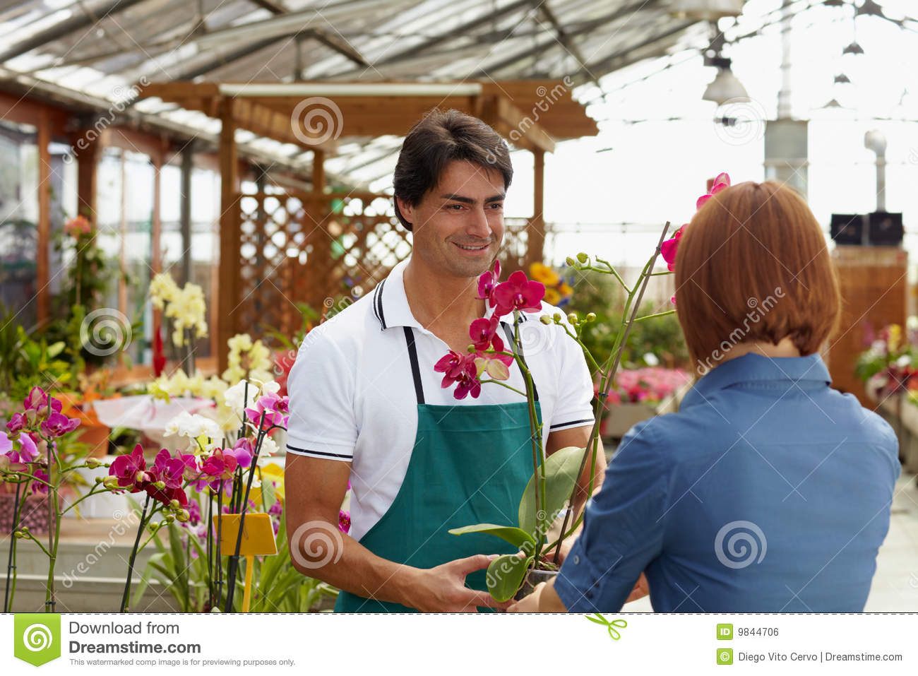 Buying orchids woman