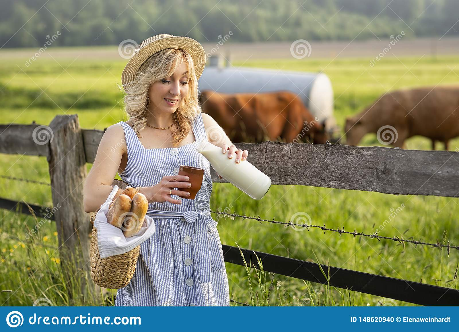 Byflicka som h?ller f?r att mj?lka in i ett exponeringsglas, p? bakgrunden av f?lt med betande kor Lantligt liv f?r sommar i Tysk