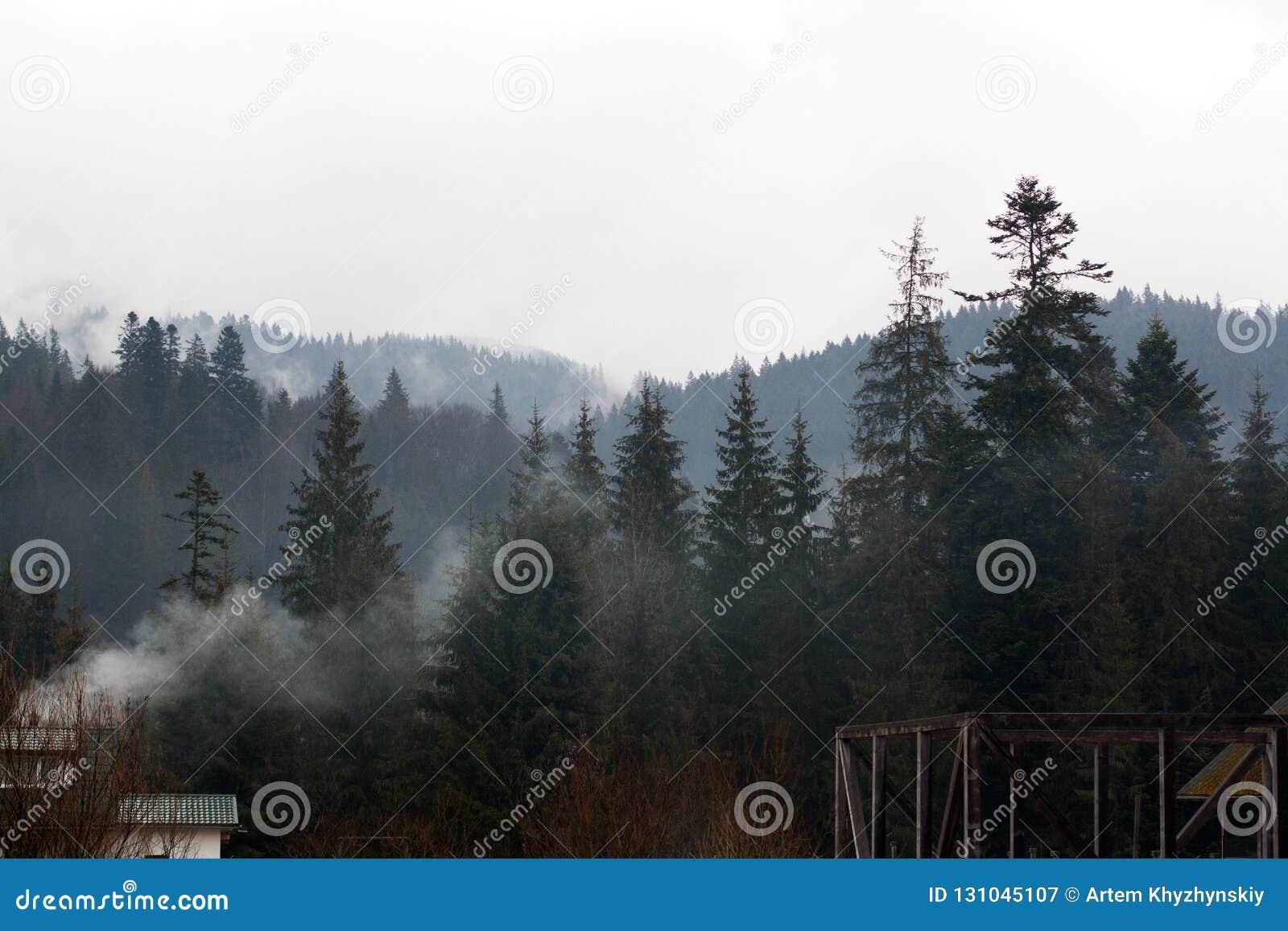 Bygårdbyggnader framme av den dimmiga skogen