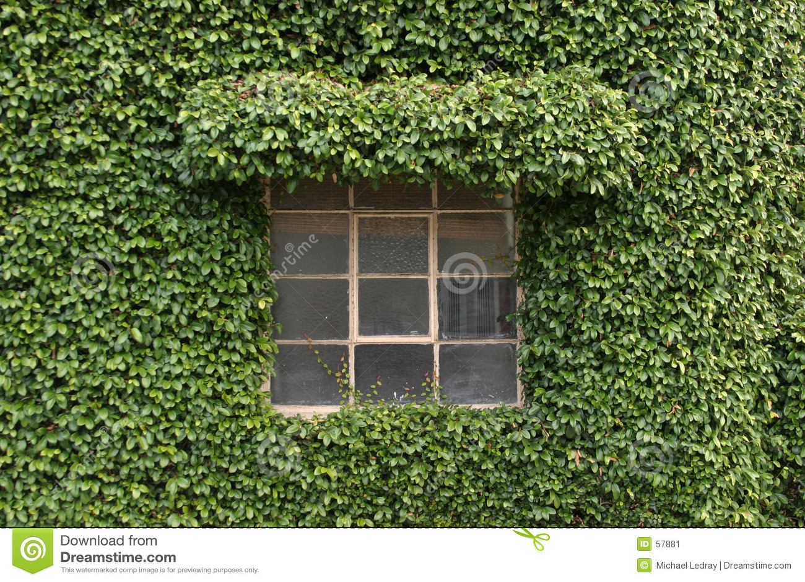 Byggnad räknad växt