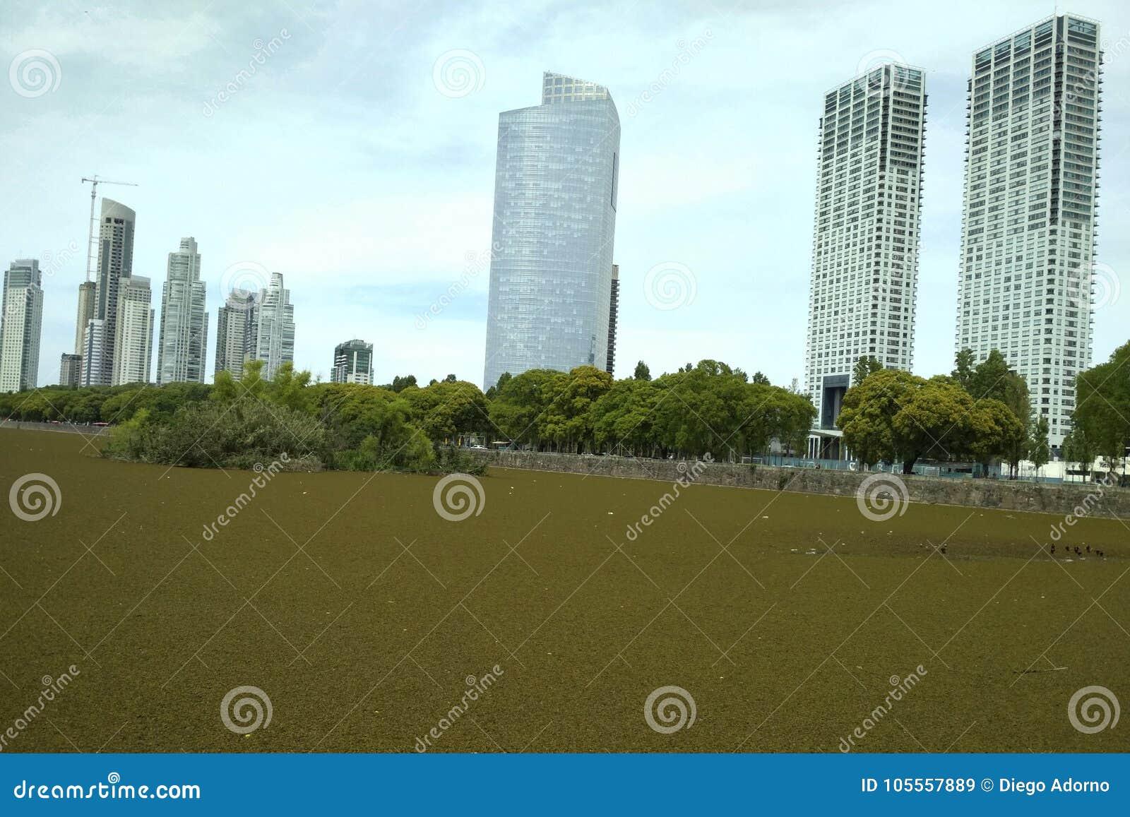 Byggnader av porten Madero Buenos Aires