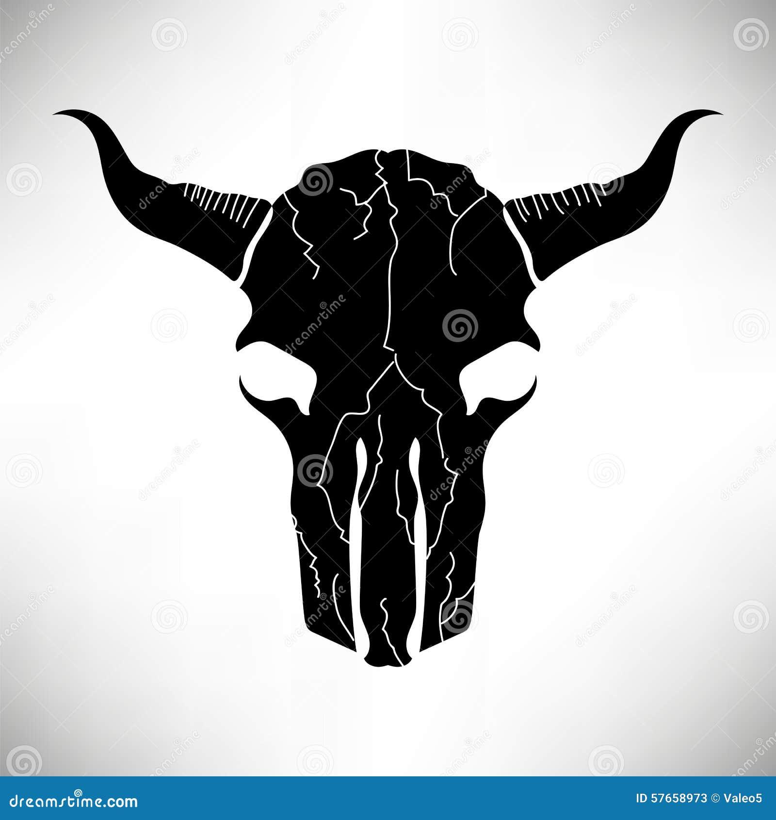 Byk czaszka