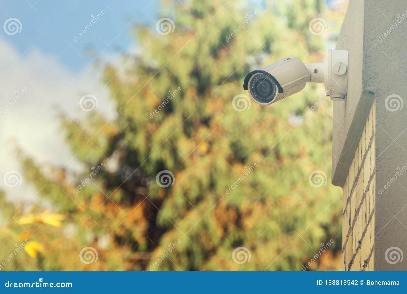 Cámara CCTV moderna en la pared del edificio, fondo del follaje