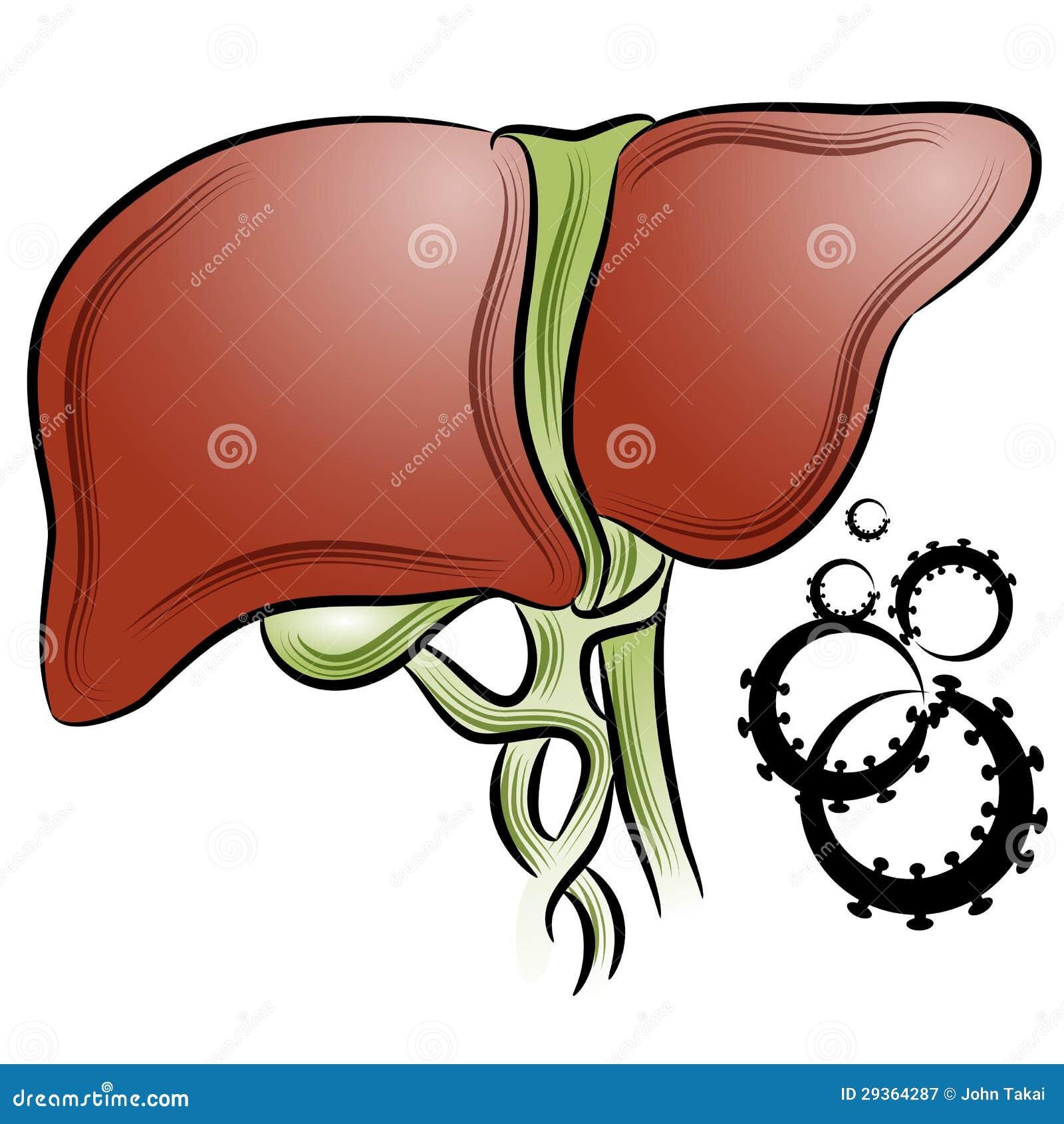 cáncer de hígado ilustración del vector. ilustración de humano