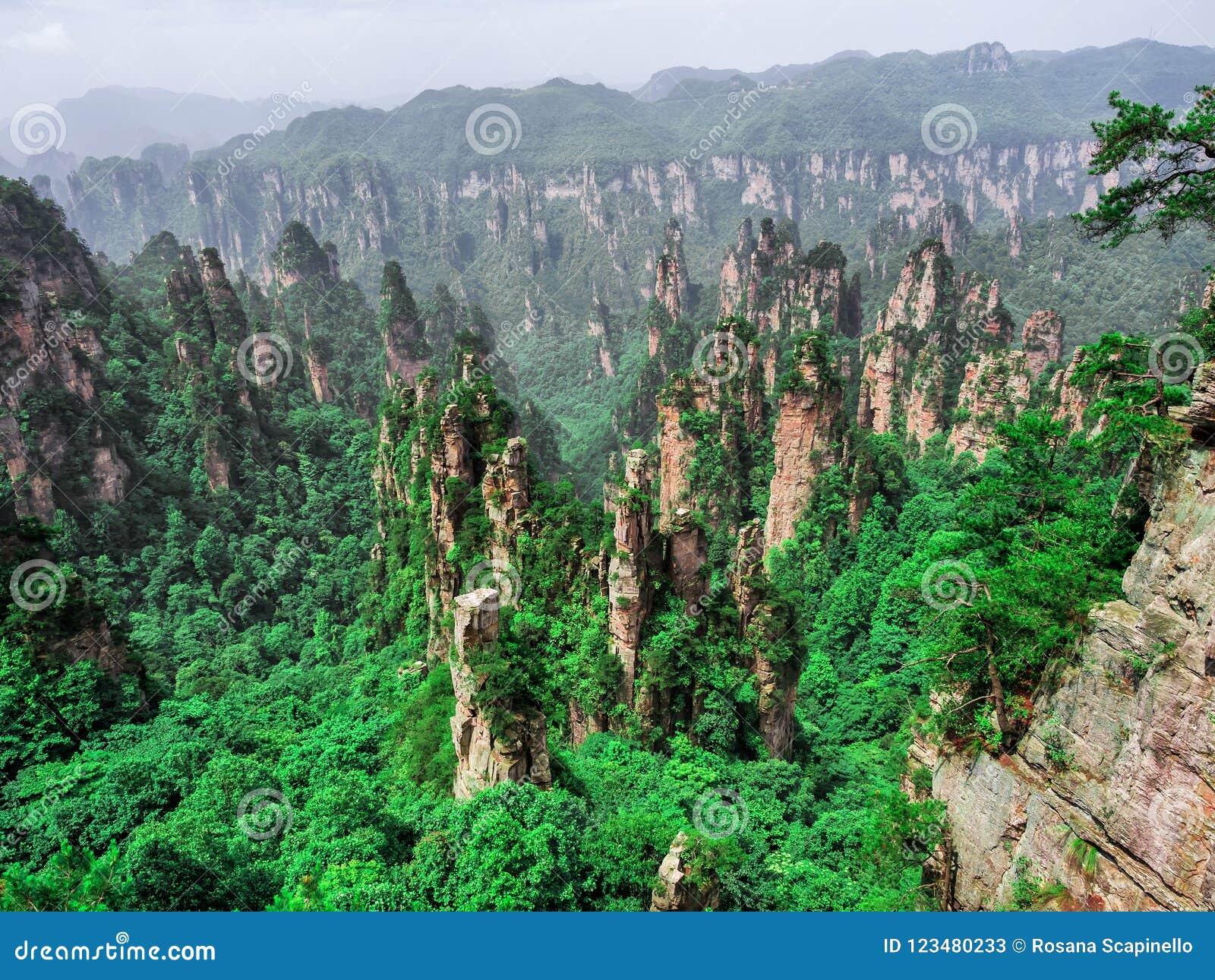Cársico da coluna da montanha de Tianzi na área cênico de Wulingyuan, Zhangjiajie Forest Park nacional, Hunan, China