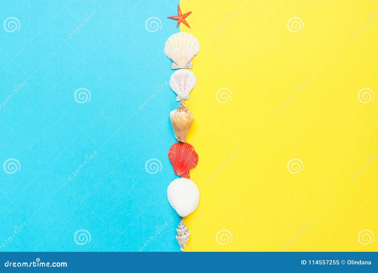 Cáscaras del mar de las estrellas de mar rojas planas de diverso espiral de las formas en el dúo Tone Yellow Blue Background de l