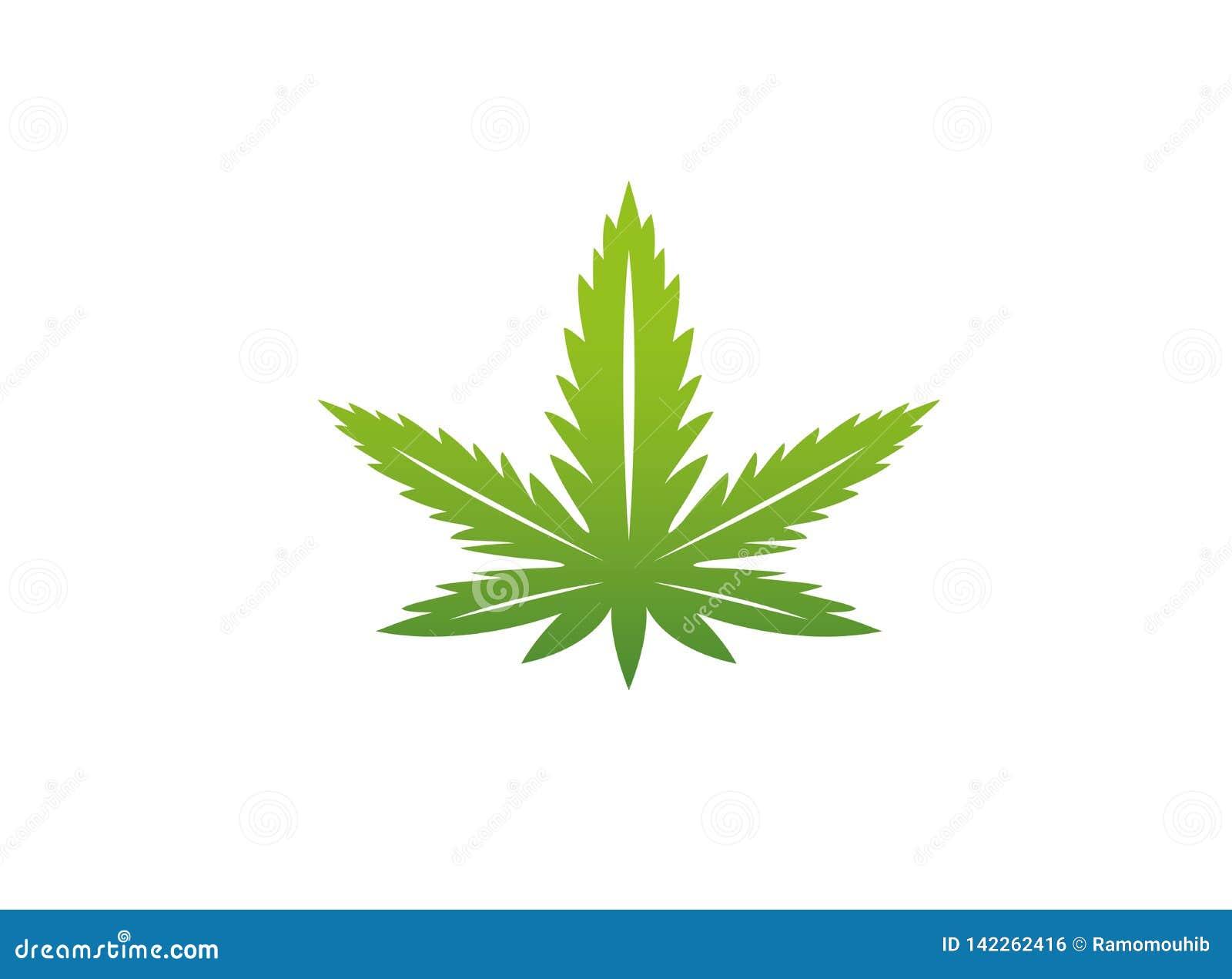 Cânhamo médico do cannabis da marijuana para a ilustração do projeto do logotipo