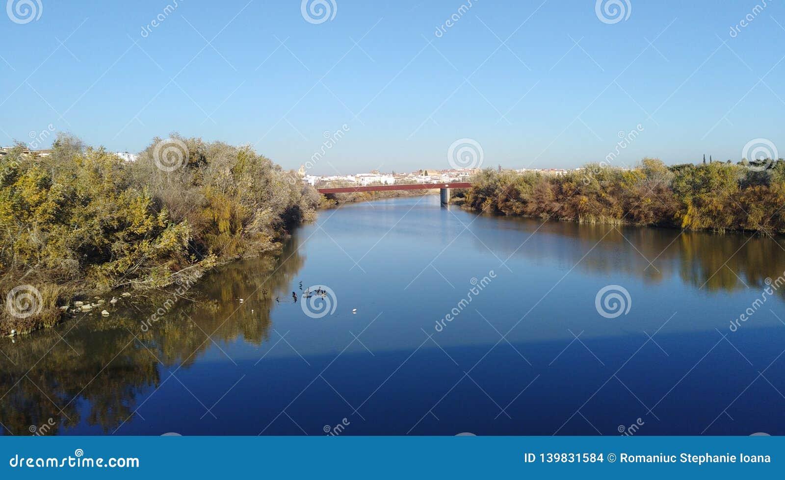 CÃ ³ rdoba的河瓜达尔基维尔河